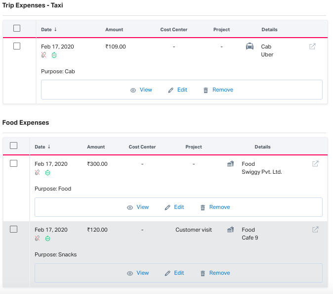 Expenses view in the expense report
