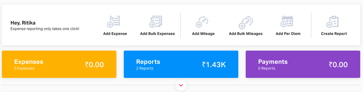 User with Fyler's access Dashboard